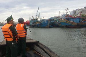 BĐBP Bà Rịa-Vũng Tàu chủ động, khẩn trương triển khai các phương án phòng chống bão sõ 9
