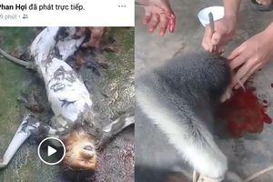 Xác minh nhóm người đàn ông giết khỉ rồi phát trực tiếp trên Facebook