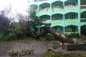 Khánh Hòa, Vũng Tàu, Cần Giờ tiếp tục cho HS nghỉ học ngày 26/11 tránh bão