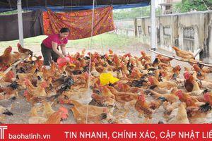 Cẩm Xuyên có 12.319 hộ gia đình sản xuất kinh doanh giỏi
