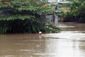 Vùng trũng Phước Nam, Ninh Thuận ngập sâu hơn 1m do hoàn lưu bão