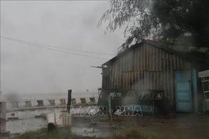 Các tỉnh Đông Nam Bộ gió giật cấp 8, mưa to, khả năng có lốc xoáy
