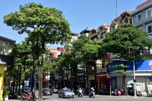 Hà Nội: AQI đạt mức tốt tại các điểm quan trắc nền đô thị tăng