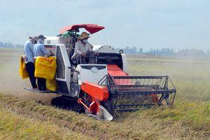 Thúc đẩy nghiên cứu, ứng dụng khoa học công nghệ phục vụ tái cơ cấu ngành nông nghiệp