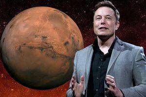 Elon Musk: '70% tôi sẽ lên sao Hỏa'