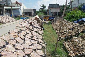 Các cơ sở chế biến thủy hải sản khô nói không với hóa chất, phẩm màu và sản phẩm 'bẩn'