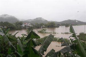 Hàng trăm nhà dân ở Phú Yên chìm dưới biển nước, nhiều nơi bị cô lập
