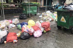 Vệ sinh môi trường, vệ sinh nguồn nước và phòng chống dịch bệnh sau bão số 9