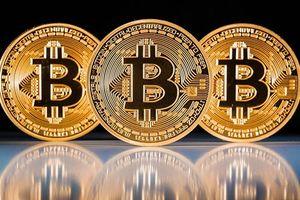 Mơ giá Bitcoin lên đỉnh ư, hãy xem nó đang lao xuống vực…