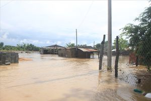 Ninh Thuận: Mưa lũ, bão số 9 'cuốn đi' gần 300 tỉ đồng