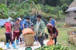 Chuyện ở Tuyên Quang: Nơi 'đốt đuốc' không tìm ra...hộ nghèo