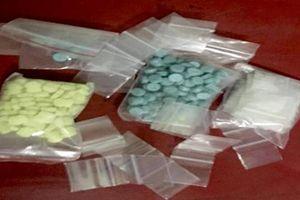 Nhiều 'kiều nữ' mua bán ma túy sa lưới