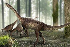 Phát hiện hóa thạch khủng long cổ nhất từng được biết đến