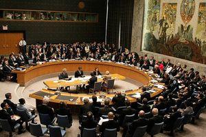 Nga triệu tập Hội đồng Bảo an sau vụ việc ở Biển Azov