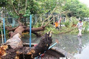 Khắc phục hậu quả bão số 9, chủ động phương án ứng phó mưa lũ