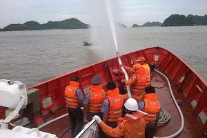 Tai nạn hàng hải toàn ngành giảm mạnh