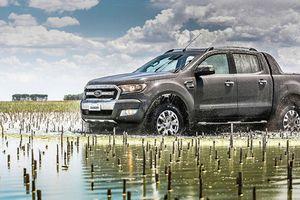 Tìm hiểu về Pickup truck và các dòng xe bán tải cơ bản