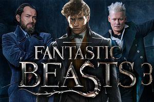 Những giả định nào được đặt ra cho 'Fantastic Beasts 3'?