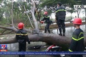 Người dân TP Hồ Chí Minh vất vả chống chọi sau bão