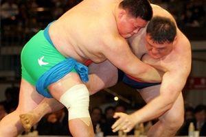 Hai miền Triều Tiên lại bắt tay vì môn đấu vật truyền thống
