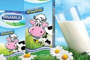 Hà Nội: Vinamilk trúng thầu, sẵn sàng triển khai Gói thầu số 01 Chương trình Sữa học đường