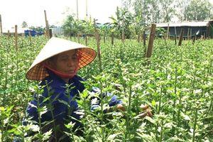 Lục Ngạn (Bắc Giang): Vận động nhân dân hiến 385 nghìn m2 đất xây dựng NTM