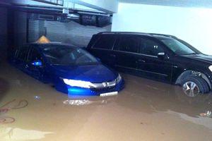 Làm sao để tránh mua phải ô tô cũ từng bị thủy kích?