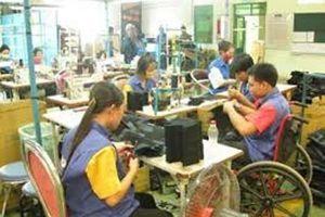 Hộ gia đình sử dụng lao động khuyết tật được hỗ trợ thế nào?