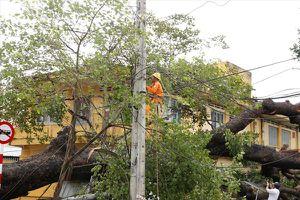 Thăm hỏi công nhân khắc phục sự cố điện do bão số 9 Usagi gây ra