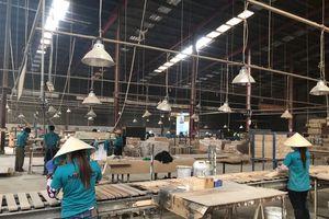Chuyên nghiệp hóa trong chế biến gỗ Việt