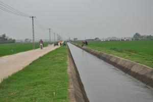 Hơn 100 triệu USD giúp Việt Nam tăng năng suất nông nghiệp