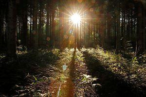 Giảm sự nóng lên toàn cầu bằng… phun sulphate chống nắng?
