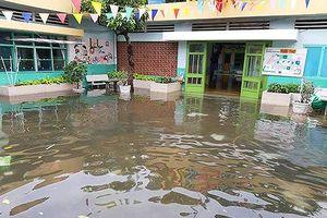 Hàng ngàn học sinh TPHCM vẫn nghỉ học vì trường ngập, cây đổ