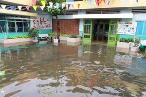 Trường học TPHCM tích cực dọn dẹp sau bão số 9