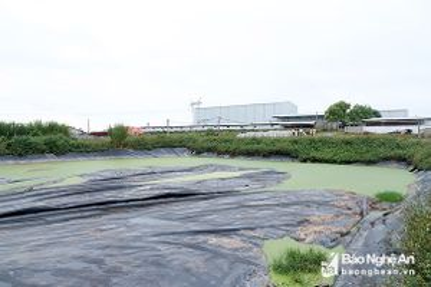 HĐND tỉnh Nghệ An chỉ ra nhiều tồn tại trong quản lý nhà nước về bảo vệ môi trường