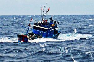 Vợ chết, chồng mất tích khi đi đánh cá trên biển Thanh Hóa