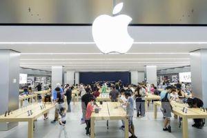 Apple sẽ đào tạo sinh viên viết code miễn phí