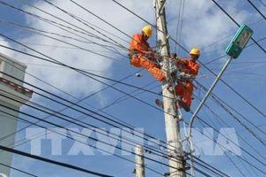 Quảng Ngãi đảm bảo an toàn hành lang lưới điện mùa mưa bão