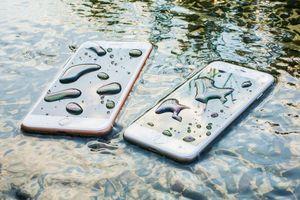 Cần làm gì khi điện thoại bị vô nước?