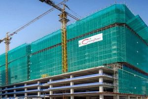 Coteccons quyết định mua 3,8 triệu cổ phiếu quỹ