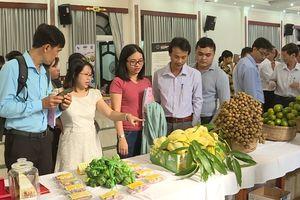 Sản phẩm nông nghiệp được bảo hộ quyền sở hữu trí tuệ: Kiểm soát nguồn gốc và chất lượng