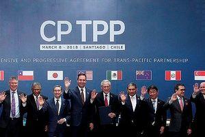 Tham gia CPTPP: Liệu doanh nghiệp Việt Nam có khai thác được 'mỏ vàng' trong nước?