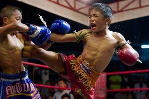 Sự khốc liệt của Muay Thái: Cái chết trên sàn đấu của một đấu sĩ nhí