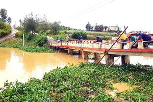 Khẩn trương giúp dân khôi phục sản xuất, ổn định đời sống sau mưa lũ