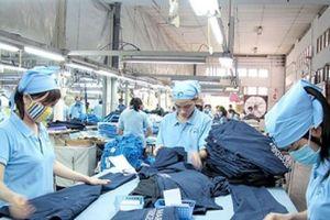 Nhiều doanh nghiệp hưởng lợi sau khi Việt Nam tham gia CPTPP