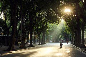 Thời tiết 29/11: Hà Nội nắng hanh, đêm và sáng sớm lạnh 16 độ