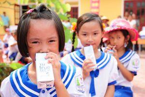 Bộ Y tế: Tiếp tục dùng sữa tươi cho chương trình Sữa học đường