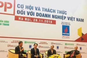 CPTPP – cơ hội chuyển dịch tốt nhất về thể chế, nhà đầu tư và thị trường cho Việt Nam