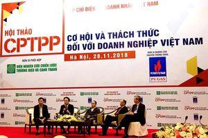 CPTPP: Không chỉ lo xuất khẩu, doanh nghiệp Việt còn phải cạnh tranh ngay chính trên sân nhà