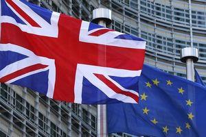 'Dừng Brexit sẽ gây thiệt hại to lớn cho nước Anh'